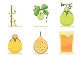 【百香果图片】38套 Illustrator 百香果图案下载,百香果图推荐款 | 天天疯后制