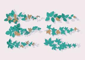 【藤蔓素材】37套 Illustrator 藤蔓图片下载,藤蔓图案推荐款