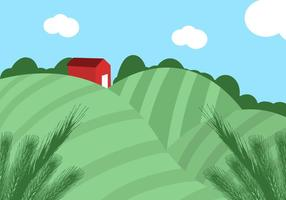 【稻田图片】32套 Illustrator 稻田背景图下载,稻田插画推荐款