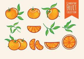 【橘子图片】68套 Illustrator 橘子图案ai下载,橘子素材推荐