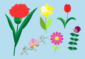 【郁金香图片】14套 Illustrator 郁金香图案下载,郁金香桌布推荐款