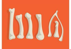 【骨头图案】35套 Illustrator 骨头卡通下载,骨头图片推荐款