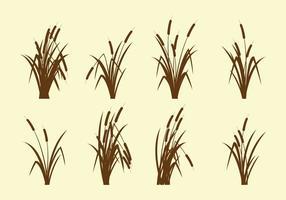 【草素材】精选38款草素材下载,草图片免费推荐款