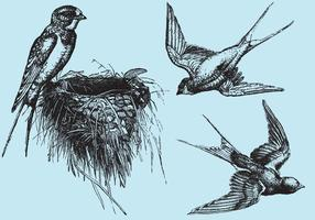 【复古素材AI】72套illustrator 怀旧复古素材下载,复古图案推荐款