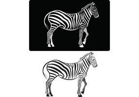 【斑马图案】40套 Illustrator 斑马图片下载,斑马图画推荐款