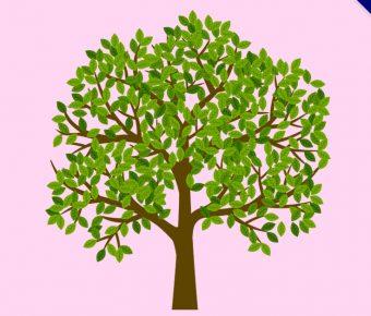 【樹插畫】精選45款樹插畫下載,樹插圖免費推薦款