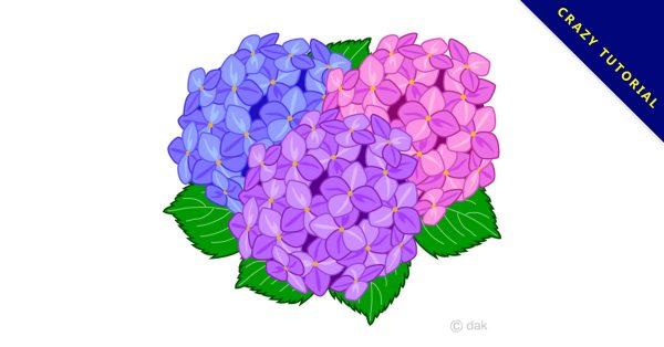 【繡球花圖片】精選10款繡球花圖片下載,繡球花插畫免費推薦款