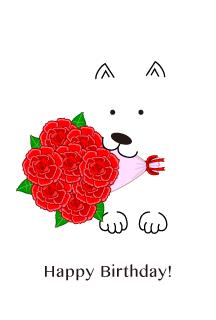 バラの花束と白犬のバレンタイン
