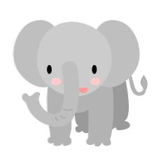 可愛いゾウの顔