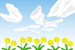 【蒲公英图片】精选11款蒲公英图片下载,蒲公英照片免费推荐款