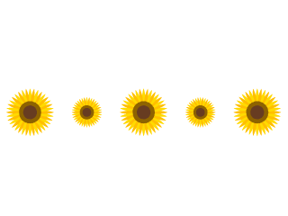 【向日葵图片】精选20款向日葵图片下载,向日葵卡通免费推荐款