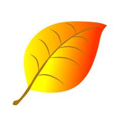 シンプルな落ち葉