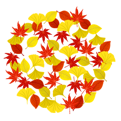 【枫叶素材】精选18款枫叶素材下载,枫叶图免费推荐款