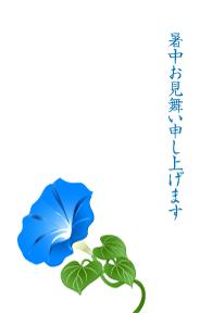 【牵牛花图片】精选12款牵牛花图片下载,牵牛花图免费推荐款