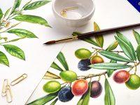 【靜物水彩】19款植物水彩畫作品欣賞,花朵水彩畫推薦