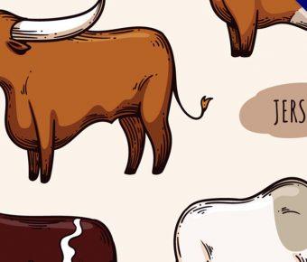 【牛圖片】7張精細的牛圖片下載,高品質作業檔推薦