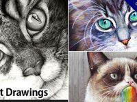 【色鉛筆畫】26款精選色鉛筆畫作品欣賞分享,色鉛筆素描技法推薦