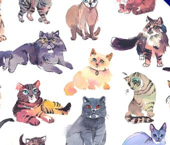 貓咪圖案欣賞,19個高品質的貓咪圖案作品圖示推薦
