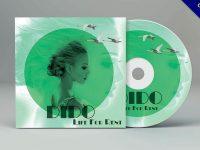 CD封面設計欣賞,29張有創意感的CD封面作品實例推薦