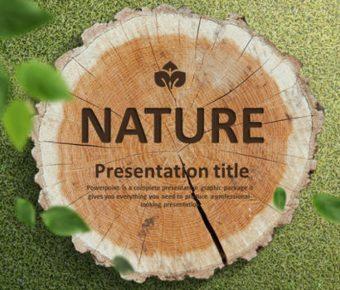 木紋PPT模板下載,20頁精細的植物PPT模板免費下載