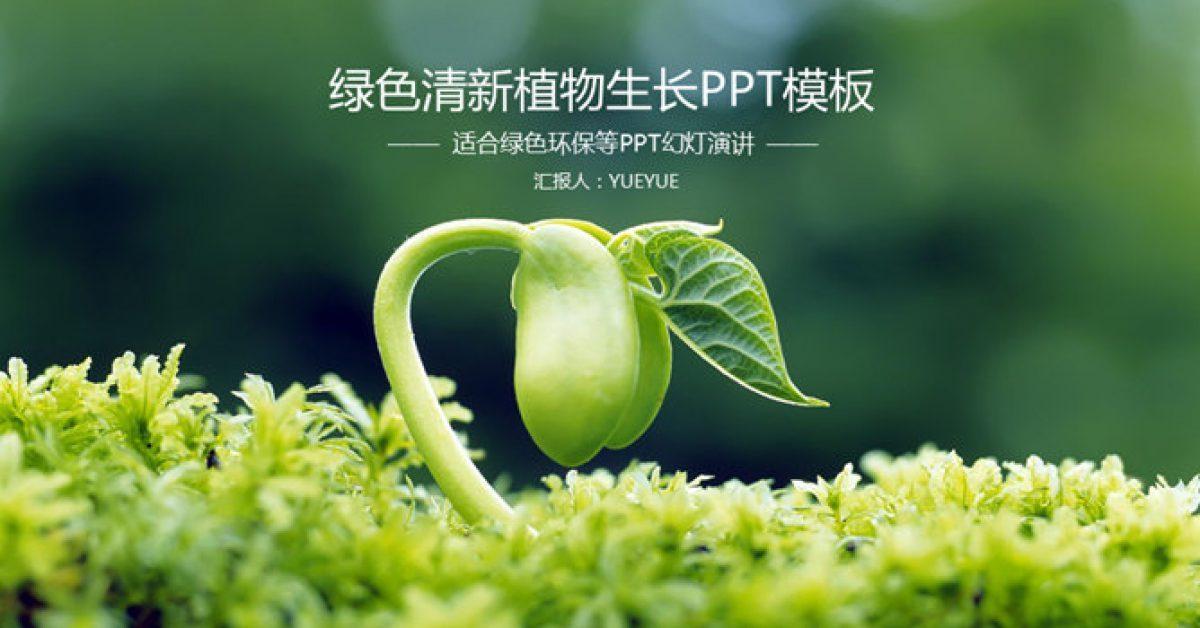 植物種植PPT模板下載,25頁精細的植物PPT模板推薦樣式