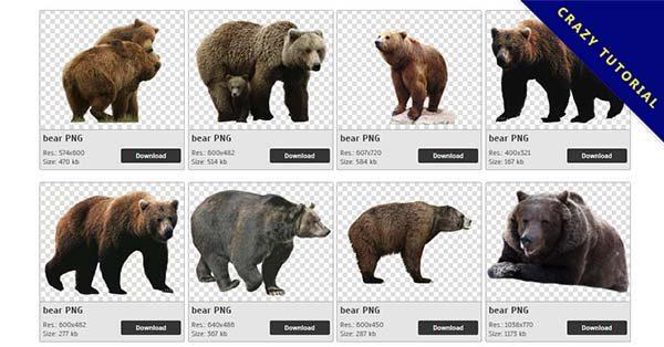 【熊PNG】精選52款熊PNG圖案免費下載,完全免去背的熊圖檔