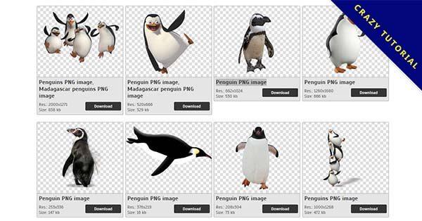 【企鵝PNG】精選19款企鵝PNG圖檔素材下載,完全免去背的企鵝圖案
