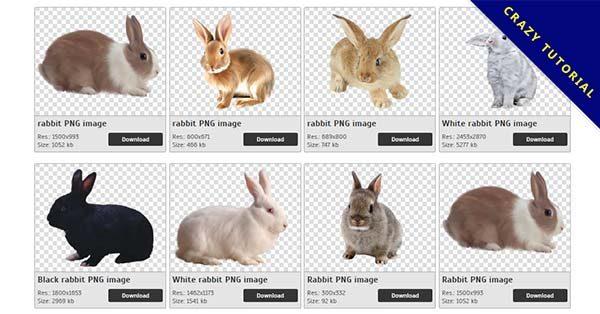 【兔子PNG】精選32款兔子PNG點陣圖素材包下載,完全免去背的兔子圖檔