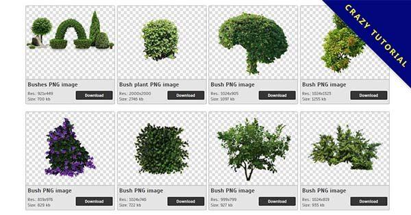 【樹叢PNG】精選31款樹叢PNG點陣圖免費下載,免費的樹叢去背圖檔