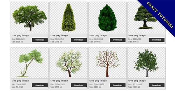 【樹木PNG】精選40款樹木PNG圖案素材免費下載,免費的樹木去背圖檔