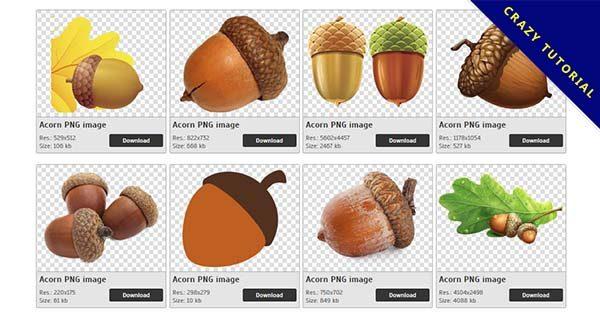 【橡子果PNG】精選42款橡子果PNG點陣圖素材下載,免費的橡子果去背圖片