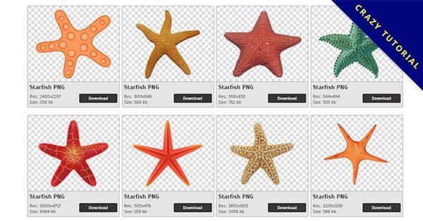【海星PNG】精選39款海星PNG圖片素材下載,完全免去背的海星圖片