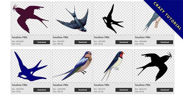 【燕子PNG】精選72款燕子PNG點陣圖免費下載,完全免去背的燕子圖檔
