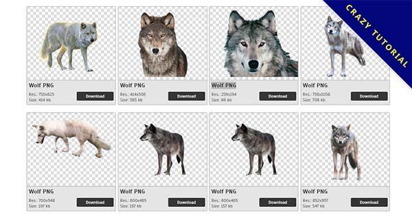 【狼PNG】精選57款狼PNG圖檔素材包下載,完全免去背的狼圖片