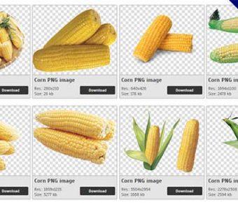 【玉米PNG】精選38款玉米PNG點陣圖免費下載,免費的玉米去背圖片