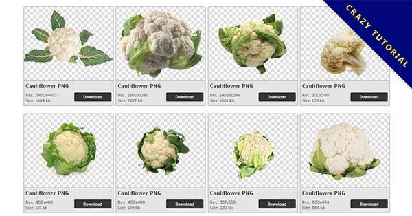 【白花椰菜PNG】精選27款白花椰菜PNG圖檔下載,免費的白花椰菜去背圖案