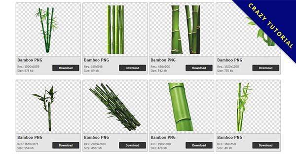 【竹子PNG】精選84款竹子PNG圖片下載,免費的竹子去背點陣圖
