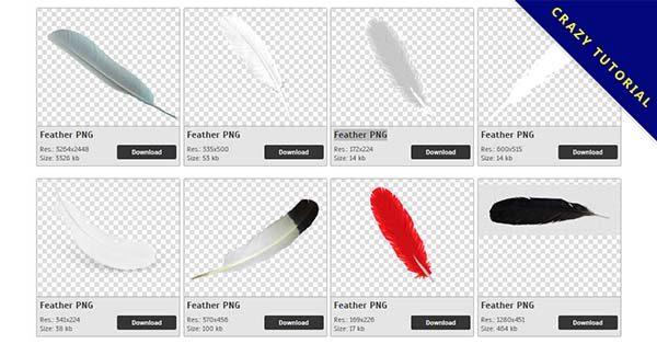 【羽毛PNG】精選53款羽毛PNG點陣圖免費下載,完全免去背的羽毛圖案