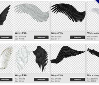 【翅膀PNG】精選63款翅膀PNG點陣圖素材下載,免費的翅膀去背圖片