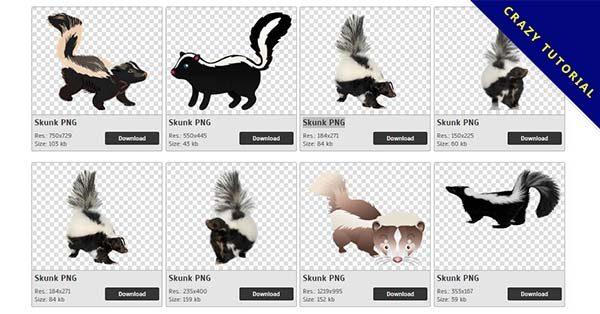 【臭鼬PNG】精選20款臭鼬PNG圖片素材免費下載,完全免去背的臭鼬圖檔