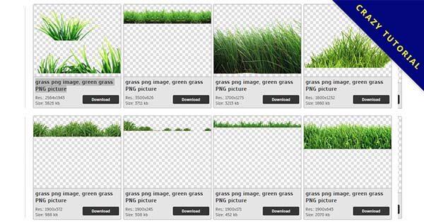 【草PNG】精選43款草PNG圖檔素材包下載,免費的草去背圖案