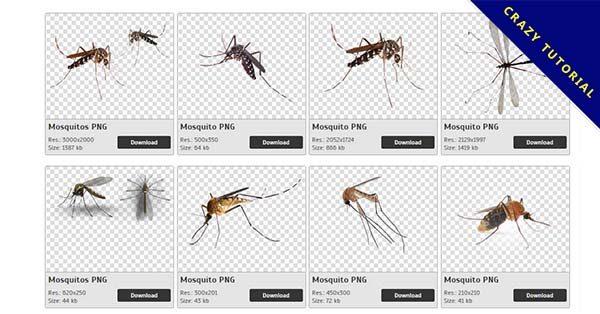 【蚊子PNG】精選32款蚊子PNG圖案下載,免費的蚊子去背圖案