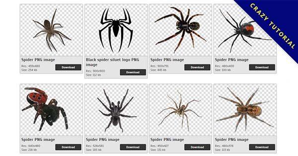 【蜘蛛PNG】精選45款蜘蛛PNG圖案素材包下載,免費的蜘蛛去背圖案