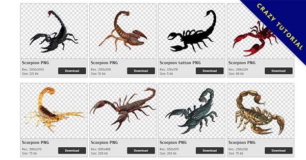 【蠍子PNG】精選27款蠍子PNG圖片素材包下載,免費的蠍子去背圖片