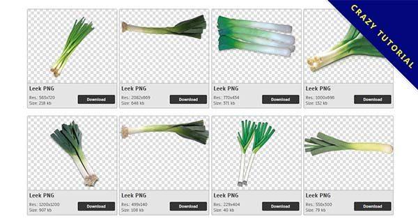 【韭蔥PNG】精選69款韭蔥PNG圖檔素材下載,免費的韭蔥去背點陣圖