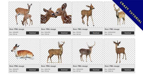 【鹿PNG】精選19款鹿PNG圖檔免費下載,完全免去背的鹿圖檔