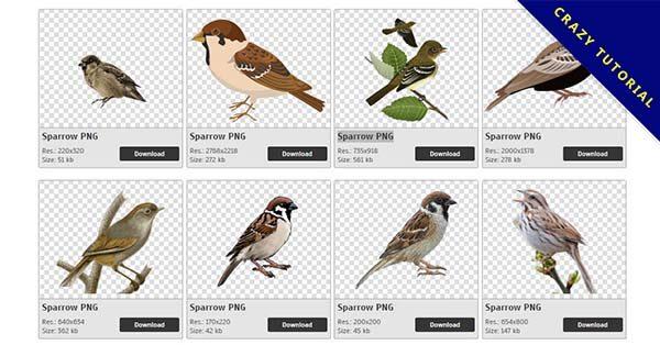 【麻雀PNG】精選40款麻雀PNG圖案素材免費下載,完全免去背的麻雀圖檔