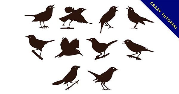【小鳥剪影】15款高質感的小鳥剪影下載,完美素材推薦