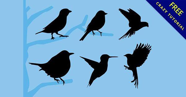 【鳥剪影】編輯也推薦的15款精美的鳥剪影下載