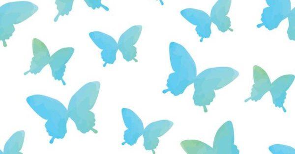 【卡通蝴蝶】11套優秀的卡通蝴蝶下載,可愛圖案推薦